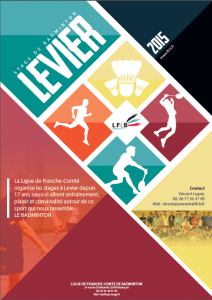 levier 1